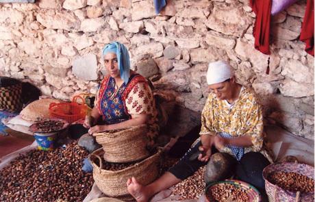 Women's Argan collective in rural North Africa