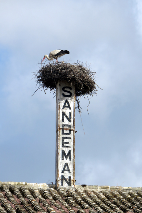 A stork nesting on the chimney is always good luck.